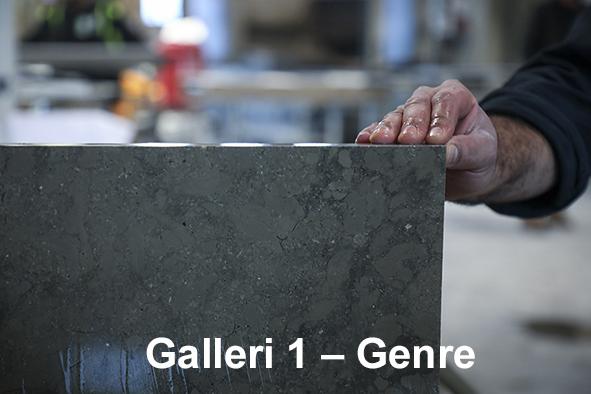 Galleri 1